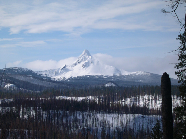 Adopt a Highway over Santiam Pass with TraditionalMountaineering