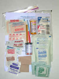 Total weight of this personal, always carried first aid stuff in a Ziploc is 3.5 oz.  Carry it in your
